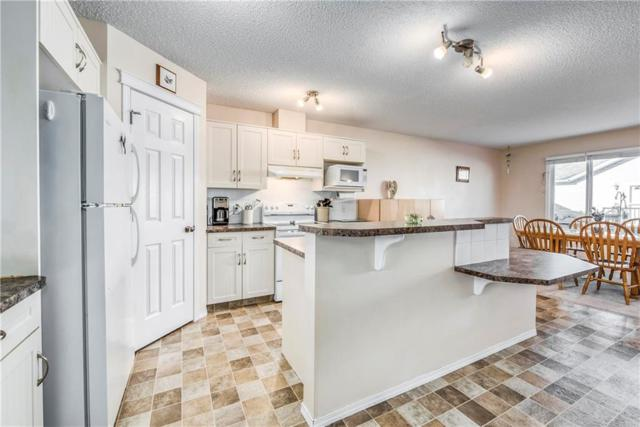 237 Hillvale Crescent, Strathmore, AB T1P 1S1 (#C4229490) :: Calgary Homefinders
