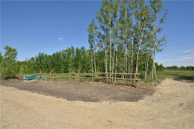 Lot 1 Big Hill Springs Estates, Rural Rocky View County, AB T3R 1H5 (#C4232717) :: The Cliff Stevenson Group