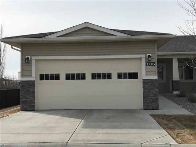 186 Cambridge Glen Drive, Strathmore, AB T1P 0E6 (#C4233636) :: Calgary Homefinders