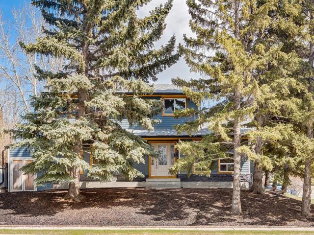9652 19 Street SW, Calgary, AB T2V 4C2 (#C4233860) :: Redline Real Estate Group Inc