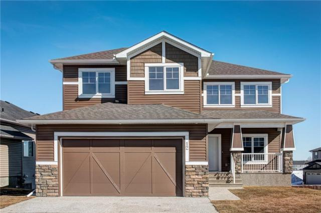 12 Lakes Estates Circle, Strathmore, AB T1P 0B7 (#C4235231) :: The Cliff Stevenson Group