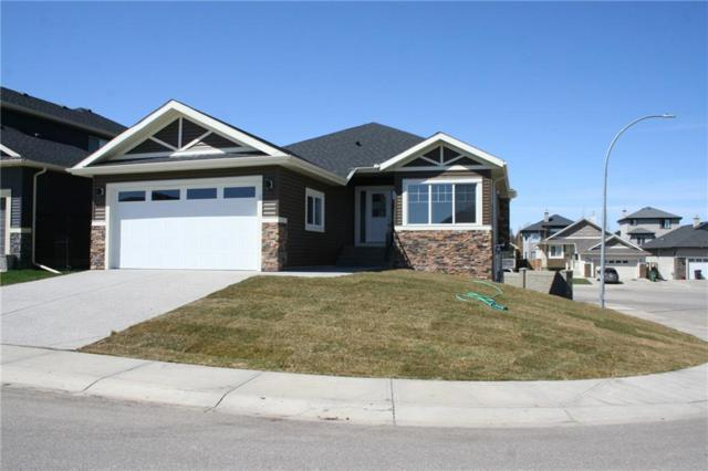 1 Lakes Estates Circle, Strathmore, AB T1P 1K3 (#C4235419) :: The Cliff Stevenson Group