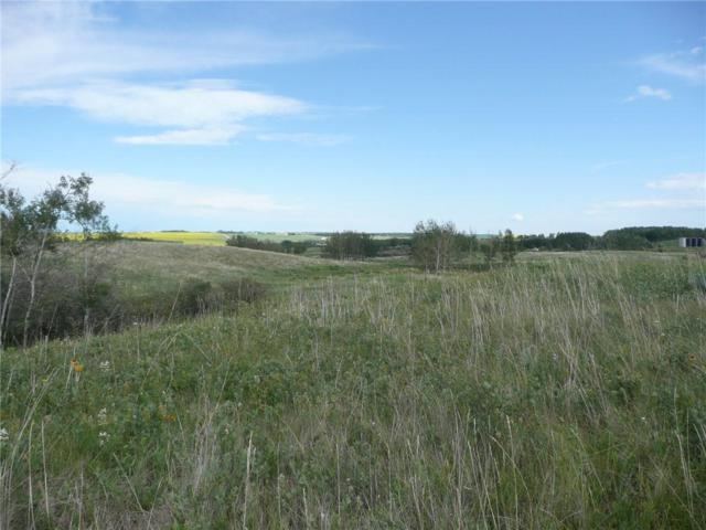 30110 Big Hill Springs Road, Rural Rocky View County, AB T0L 0W0 (#C4235444) :: Virtu Real Estate