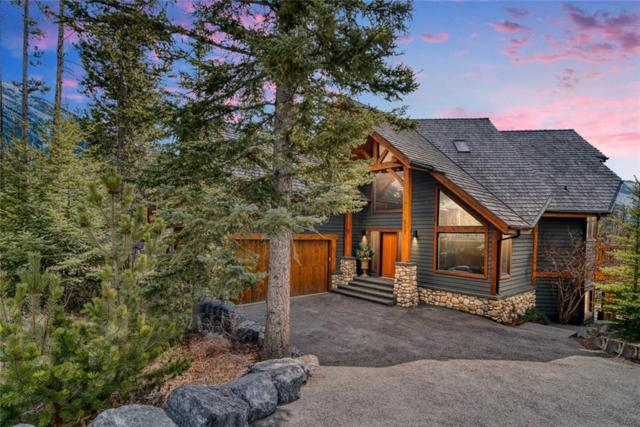 517 Silvertip Road, Canmore, AB T1W 3H3 (#C4237079) :: Canmore & Banff