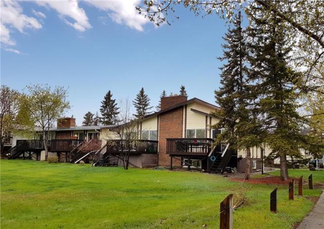 1919 69 Avenue SE #14, Calgary, AB T2C 2C2 (#C4237547) :: Redline Real Estate Group Inc