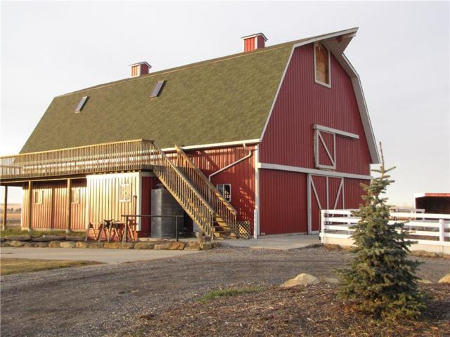 113036 466 Avenue E, Rural Foothills County, AB T1V 1A2 (#C4237982) :: The Cliff Stevenson Group