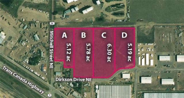320 Mitchell Street NE, Medicine Hat, AB  (#C4238052) :: Redline Real Estate Group Inc