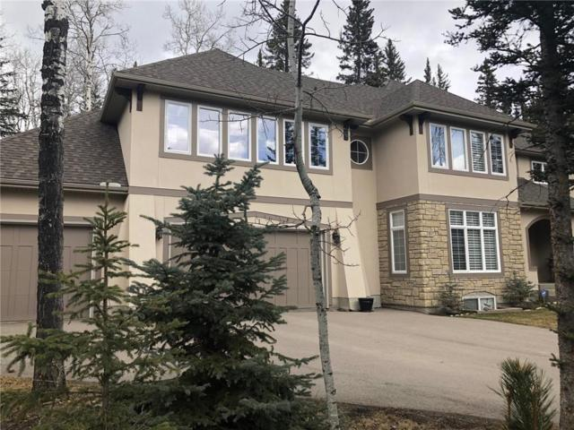 506 Hawks Nest Landing, Priddis Greens, AB T0L 1W3 (#C4238970) :: The Cliff Stevenson Group