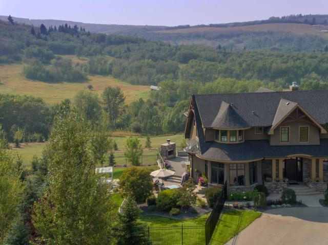 43 Red Willow Crescent W, Rural Foothills County, AB T2J 2T9 (#C4241835) :: The Cliff Stevenson Group