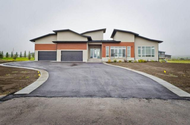 242190 Windhorse Way, Rural Rocky View County, AB T3Z 0B5 (#C4242333) :: Virtu Real Estate