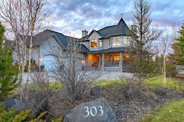 303 Snowberry Place, Rural Rocky View County, AB T3Z 3E4 (#C4245331) :: The Cliff Stevenson Group