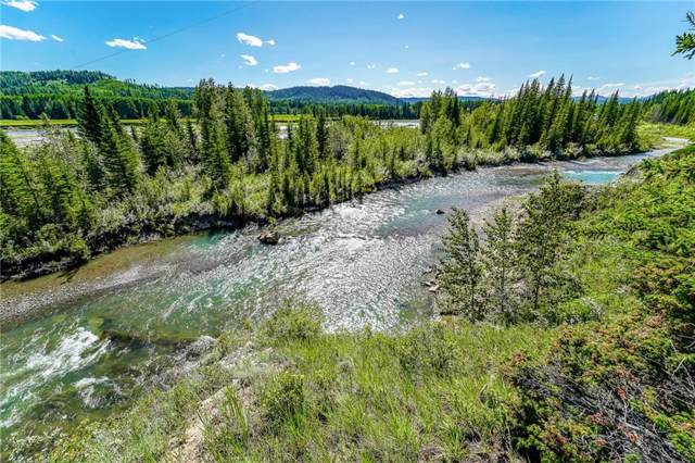73047 Township Road 31-4A, Rural Clearwater County, AB T0M 1X0 (#C4254477) :: The Cliff Stevenson Group
