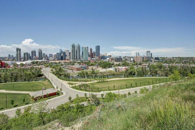 1222 Salisbury Avenue SE, Calgary, AB T2G 4J9 (#C4254667) :: Redline Real Estate Group Inc