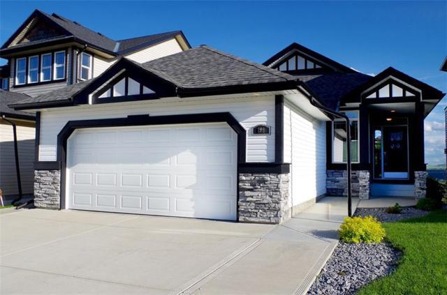 199 Sunset Circle, Cochrane, AB T4C 0C6 (#C4256650) :: Redline Real Estate Group Inc