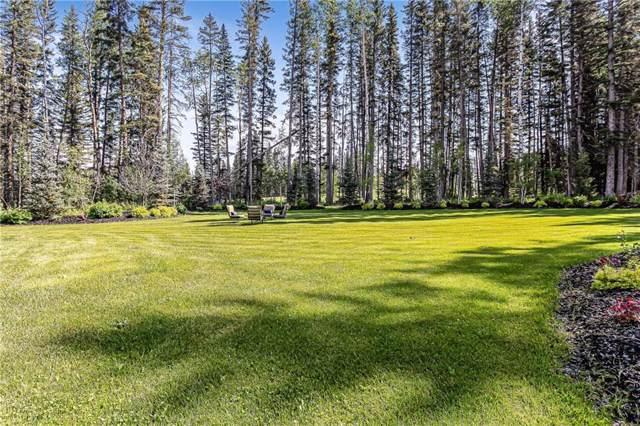 313 Hawks Nest Hollow, Priddis Greens, AB T0L 0W0 (#C4259207) :: Redline Real Estate Group Inc