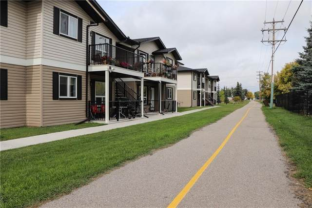 8 Bayside Place 502,, Strathmore, AB T1P 1C8 (#C4268386) :: Calgary Homefinders