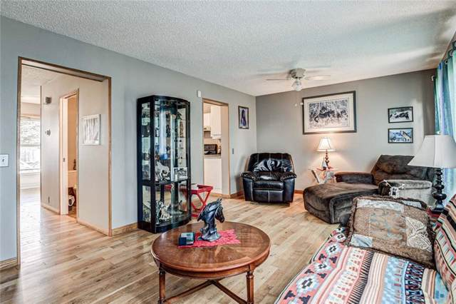 116 Abinger Crescent NE, Calgary, AB T2A 6L3 (#C4270008) :: Redline Real Estate Group Inc