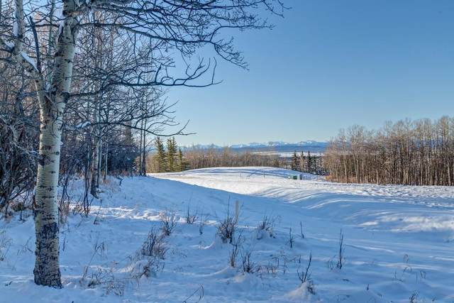 56 Stonewood Dale Place, Rural Rocky View County, AB T3Z 3M8 (#C4275761) :: Redline Real Estate Group Inc