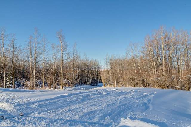 60 Stonewood Dale Place, Rural Rocky View County, AB T3Z 3M8 (#C4275774) :: Redline Real Estate Group Inc