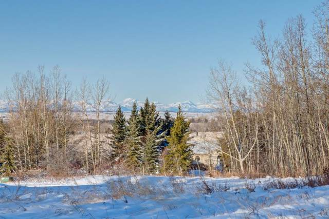 61 Stonewood Dale Place, Rural Rocky View County, AB T3Z 3M8 (#C4275784) :: Redline Real Estate Group Inc