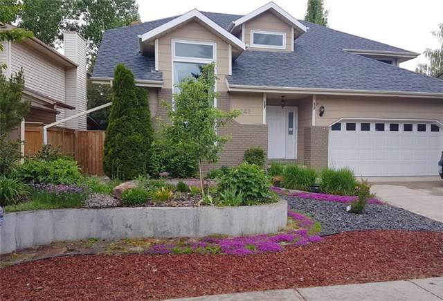 241 Sun Canyon Crescent SE, Calgary, AB  (#C4280712) :: Redline Real Estate Group Inc