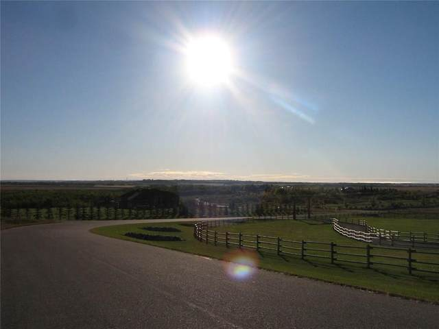 # 18 Crocus Meadows Place W, Rural Foothills County, AB T1S 1A2 (#C4285397) :: Calgary Homefinders
