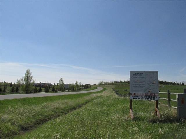 # 19 Crocus Meadows Place W, Rural Foothills County, AB T1S 1A2 (#C4285398) :: Calgary Homefinders