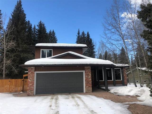47 Echlin Drive, Bragg Creek, AB T0L 0K0 (#C4290314) :: Calgary Homefinders
