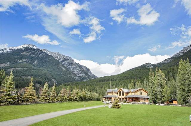 17 Canyon Road, Canmore, AB T1W 1G3 (#C4291592) :: The Cliff Stevenson Group