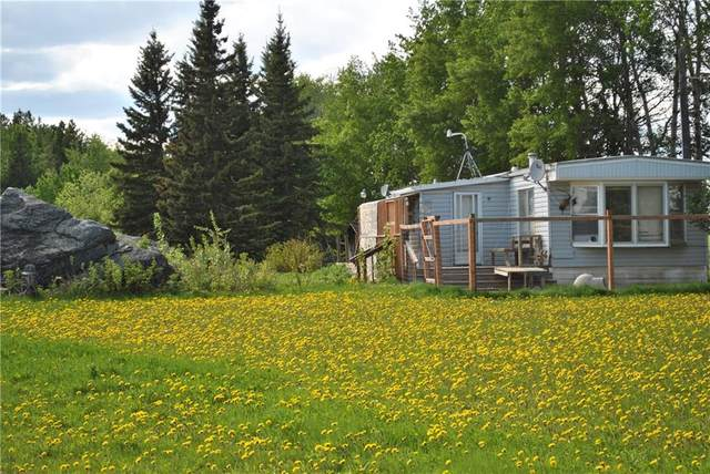 362082 Range Road 54, Rural Clearwater County, AB T0M 0R0 (#C4293912) :: The Cliff Stevenson Group