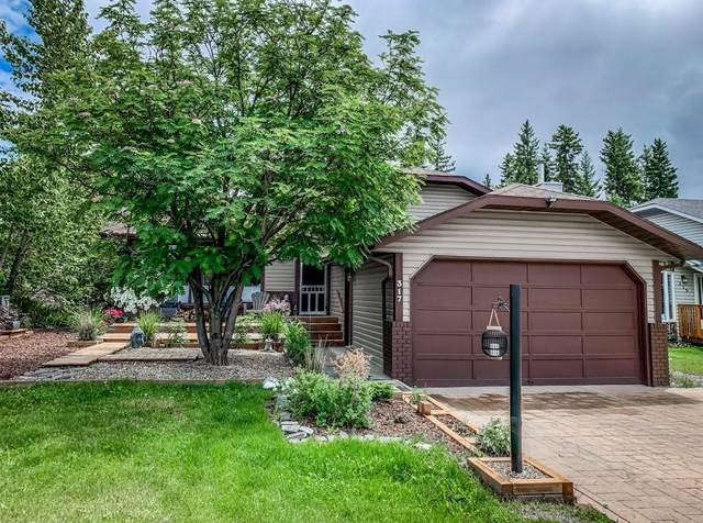 317 Pioneer Road, Canmore, AB T1W 1E8 (#C4306239) :: Canmore & Banff