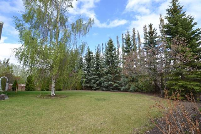 ON 10 Avenue NE, Three Hills, AB T0M 2A0 (#CA0191489) :: Canmore & Banff