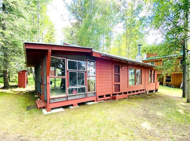 50 Crimson Lake Drive, Rural Clearwater County, AB T4T 1A4 (#CA0191963) :: Team J Realtors