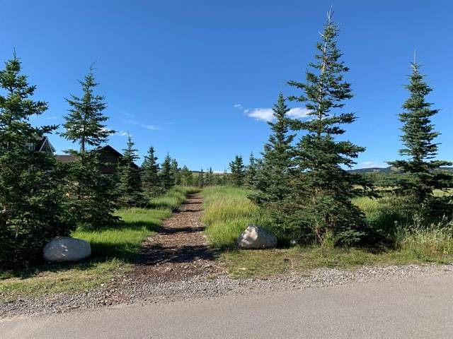 148 Cottage Club Court, Rural Rocky View County, AB T4C 1B1 (#A1021826) :: Canmore & Banff