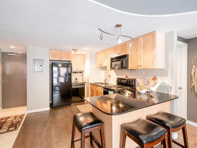 1424 22 Avenue SW #207, Calgary, AB T2T 0R5 (#A1033954) :: Calgary Homefinders