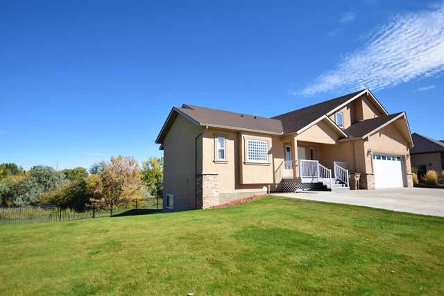 212 Lake Stafford Drive E, Brooks, AB T1R 1N5 (#A1038981) :: Calgary Homefinders