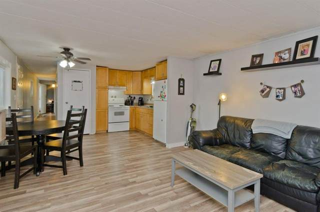 829 Brentwood Crescent, Strathmore, AB T1P 1E5 (#A1042720) :: Redline Real Estate Group Inc