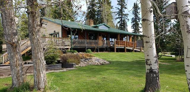 7263 Highway 584, Rural Mountain View County, AB T0M 1X0 (#A1069658) :: Calgary Homefinders