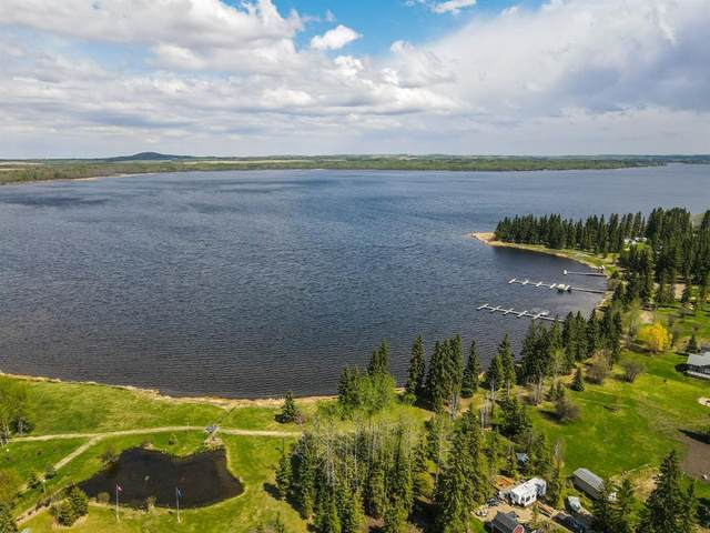 ON Mountain View Crescent, Rural Wetaskiwin County, AB T0C 0T0 (#A1091300) :: Western Elite Real Estate Group