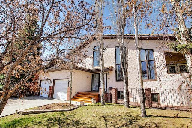 703 9 Street SE, High River, AB T1V 1L1 (#A1100401) :: Calgary Homefinders