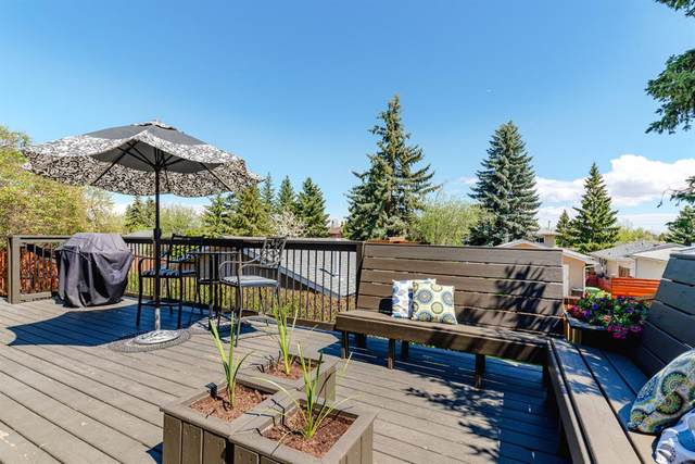 624 Cantrell Place SW, Calgary, AB T2W 2E5 (#A1108562) :: Calgary Homefinders