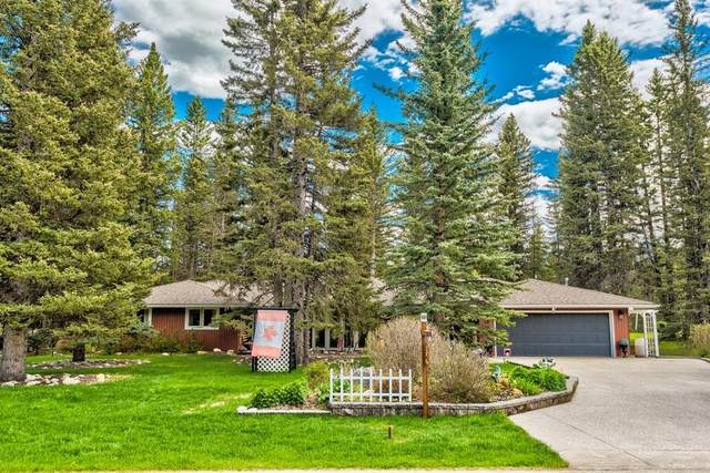 48 Wolf Drive, Rural Rocky View County, AB T3Z 1A3 (#A1110132) :: Calgary Homefinders