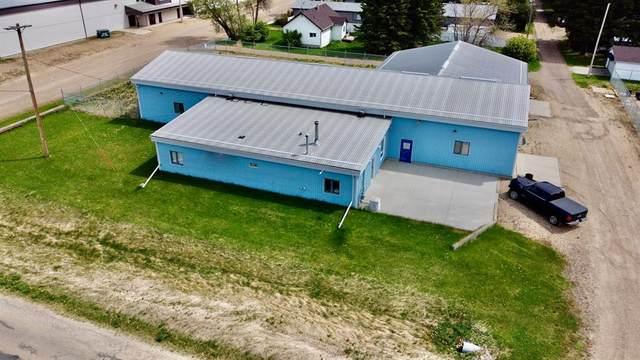 249 Malmo Street, New Norway, AB T0B 3L0 (#A1114042) :: Calgary Homefinders