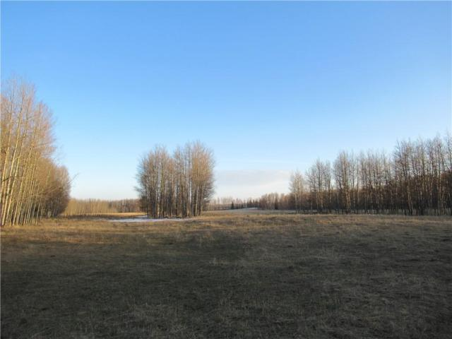 Range Road 71, Rural Clearwater County, AB T0M 0M0 (#C4243334) :: Redline Real Estate Group Inc
