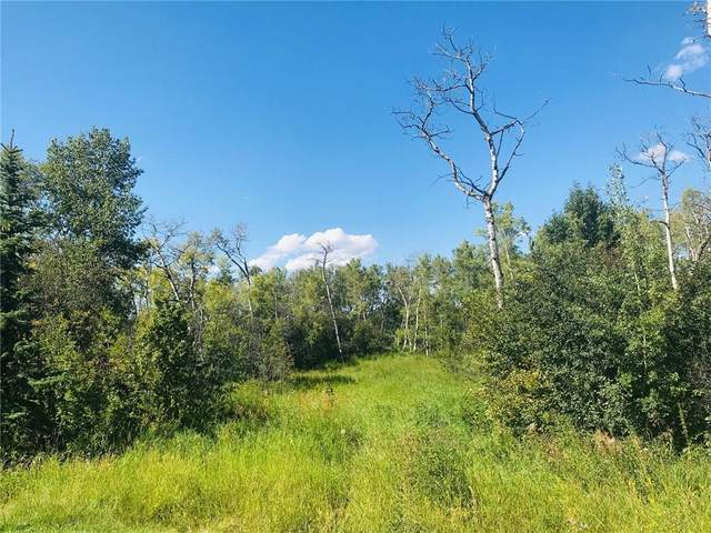 LOT 9 - 274037 Haven's Gate E, Rural Foothills County, AB T0L 0X0 (#C4245744) :: Calgary Homefinders
