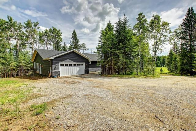50150 Twp Rd 283, Rural Rocky View County, AB T0L 0W0 (#C4258452) :: Redline Real Estate Group Inc