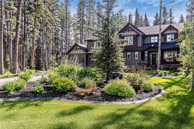 313 Hawks Nest Hollow, Priddis Greens, AB T0L 0W0 (#C4259207) :: Redline Real Estate Group Inc