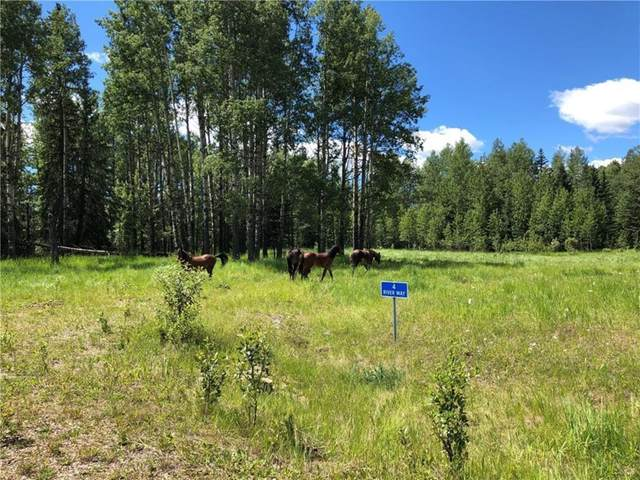 4 River Way, Rural Clearwater County, AB T0M 1X0 (#C4261896) :: Team J Realtors