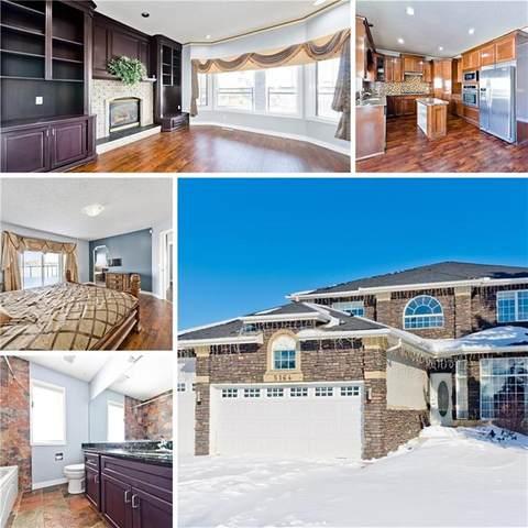 5164 Coral Shores Drive NE, Calgary, AB T3J 3J3 (#C4282461) :: Redline Real Estate Group Inc