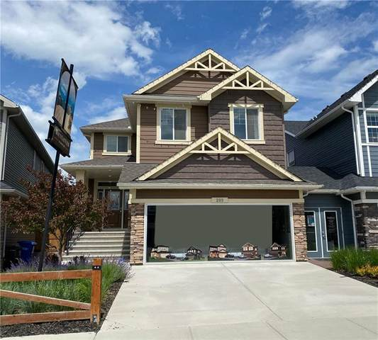 289 Mountainview Drive, Okotoks, AB T1S 0N2 (#C4286901) :: Canmore & Banff